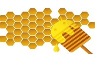 Google To Keep Honeycomb Closed For The Time Being
