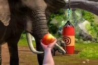 Zoo Tycoon Heads to Xbox 360 and Xbox One